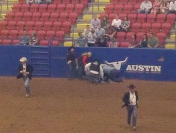 rodeo08.jpg