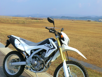 2502011.jpg