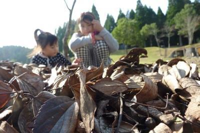 20111113歌瀬キャンプ (12)
