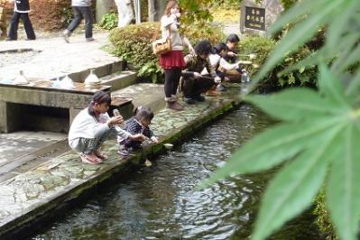 20111113阿蘇 (4)