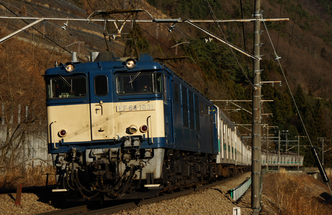 DSC07602.jpg