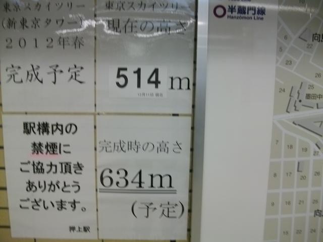 IMGP0300.jpg