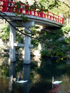 龍城堀に掛かる神橋