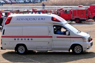 平成25年 岡崎市消防出初式