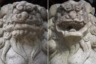 八ッ屋神明社の狛犬