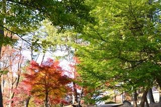 岡崎東公園