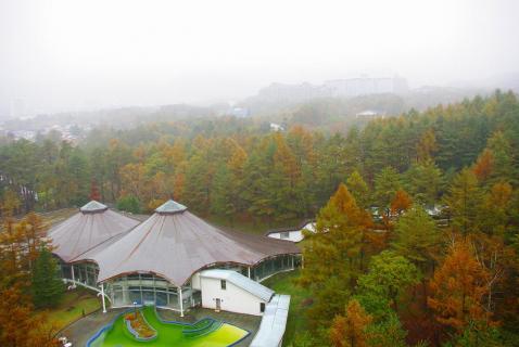 中沢ビレッジ窓から紅葉