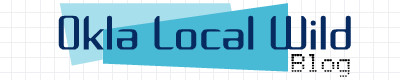 bdcam 2011-04-30 17-29-49-313