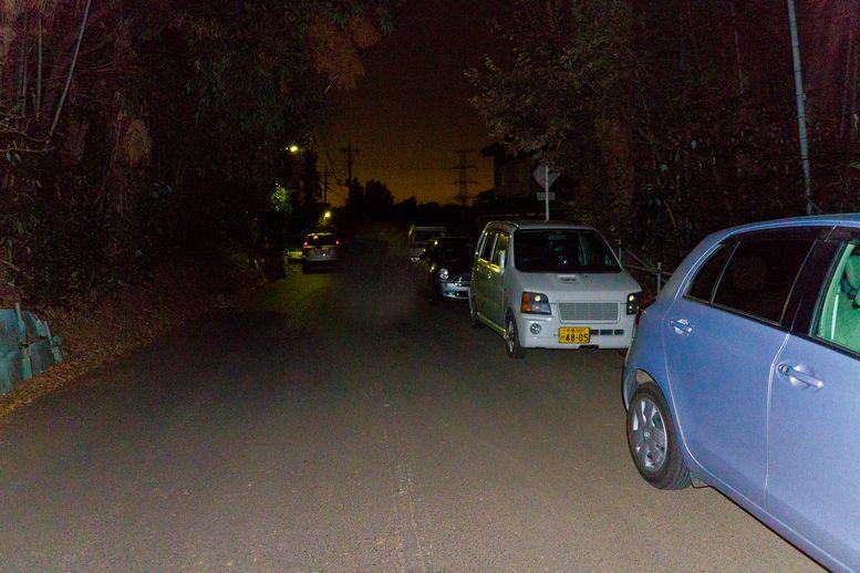 20120114aosuge01 (1 - 1)