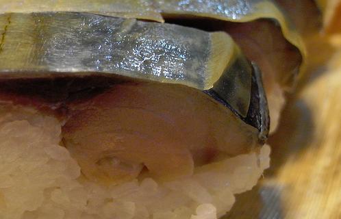 2511鯖寿司