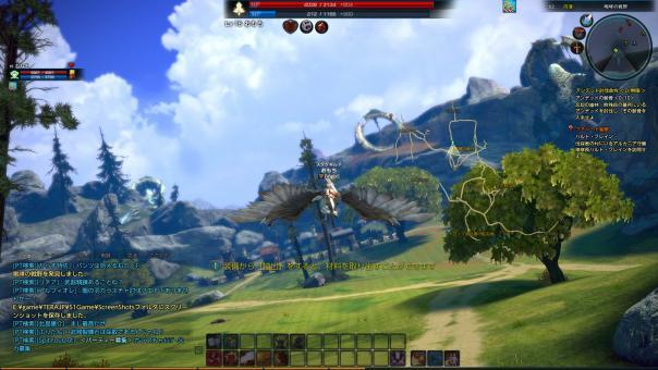 TERA_ScreenShot_20110702_003538.jpg