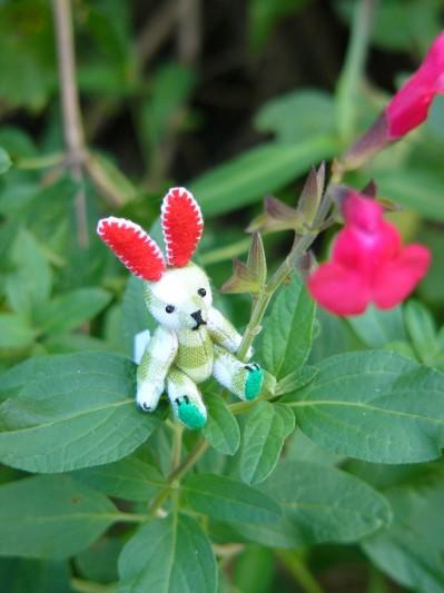 チェック柄のミニウサギその5