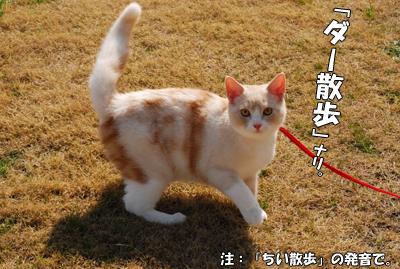 打倒「ちい散歩」m9(゚д゚)っ