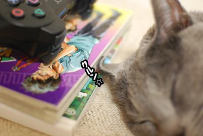 カル耳なネコ。