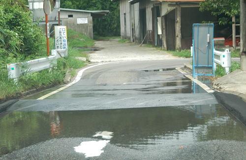 20100810_03.jpg