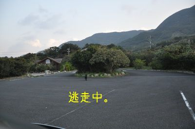 2010 12 24_1608