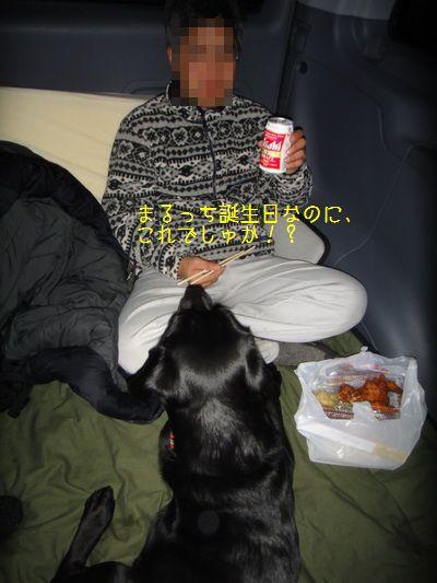 2011 02 19_3153