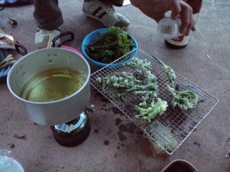山菜天ぷら2010,06,04