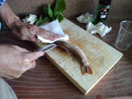 岩魚刺身2・2010,06,04