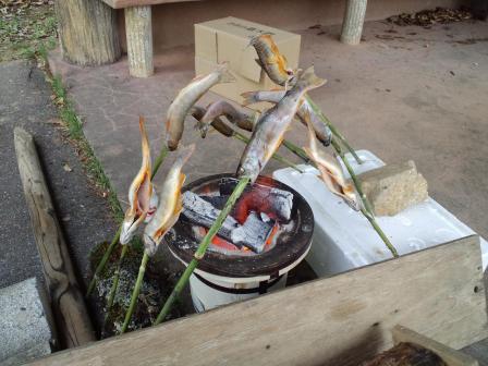 岩魚塩焼き2010,06,04