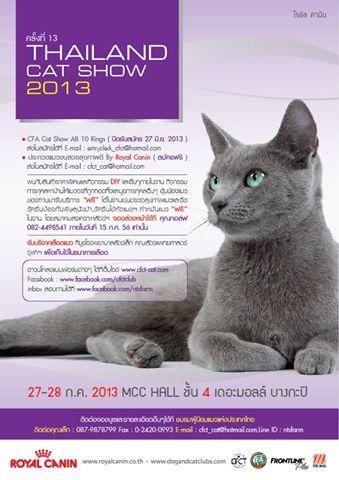 thailand cat show 2013