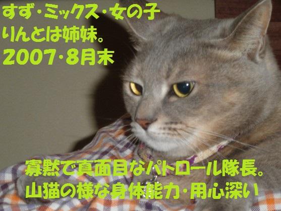 20130811-00002.jpg