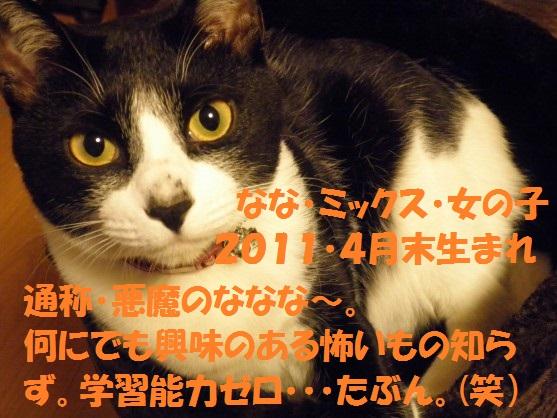 20130811-00004.jpg