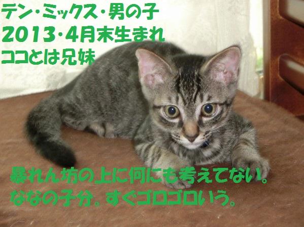20130811-00007.jpg