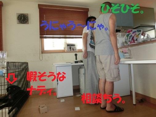 20130831-0009.jpg