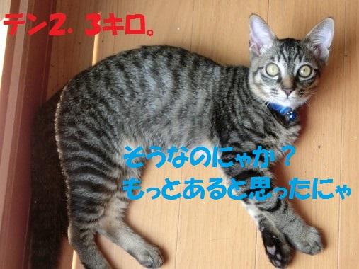 20130902-002.jpg