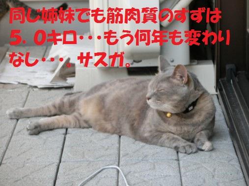 20130902-007.jpg