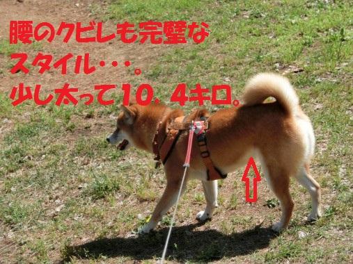 20130902-010.jpg