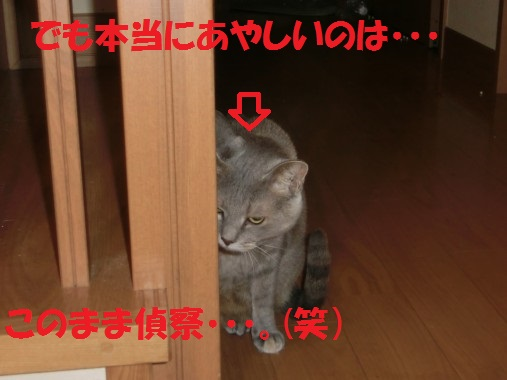 20130910-0015.jpg