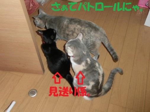 20130910-11.jpg