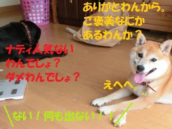 20130923-5.jpg