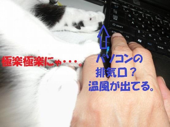 20130930-005.jpg