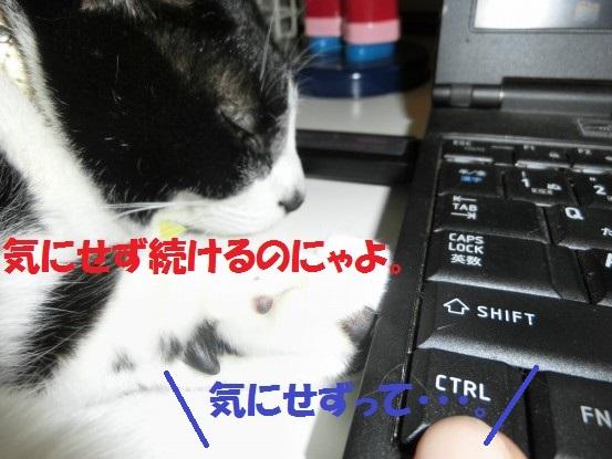 20130930-007.jpg
