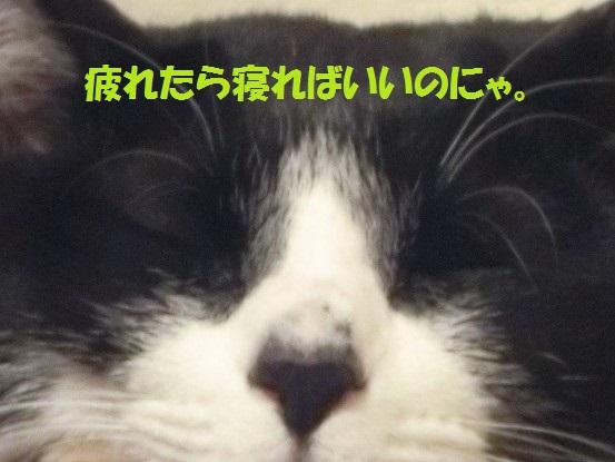 201401-011.jpg