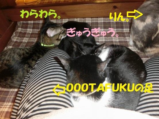 20140103-002.jpg