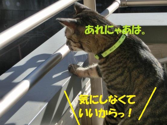 20140110-004.jpg