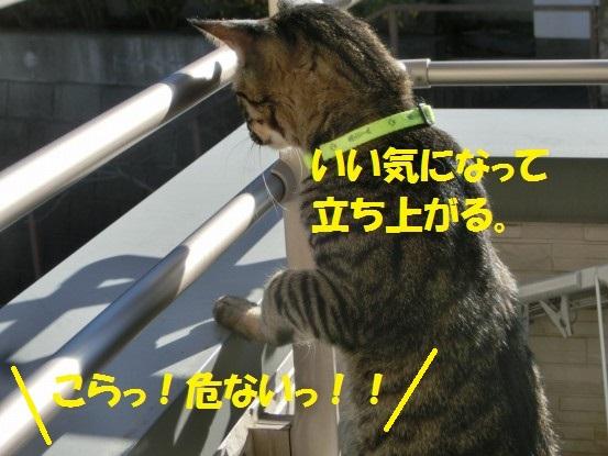 20140110-005.jpg