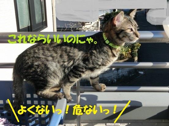 20140110-011.jpg