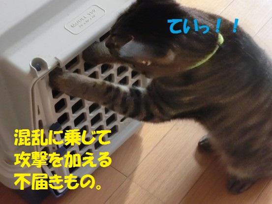 20140114-0005.jpg