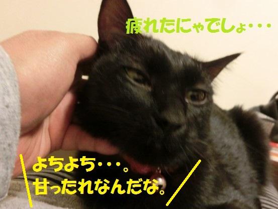 20140118-011.jpg