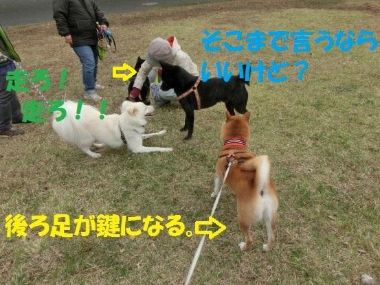 20140121-006.jpg