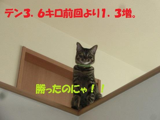 20140124-0003.jpg