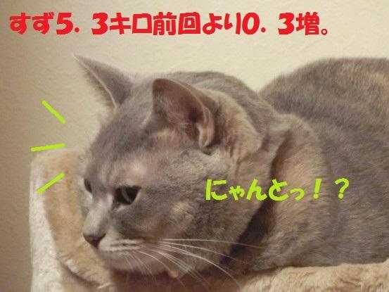 20140124-0009.jpg