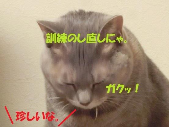 20140124-0010.jpg