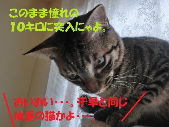 20140124-0013.jpg