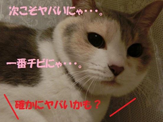 20140124-0015.jpg
